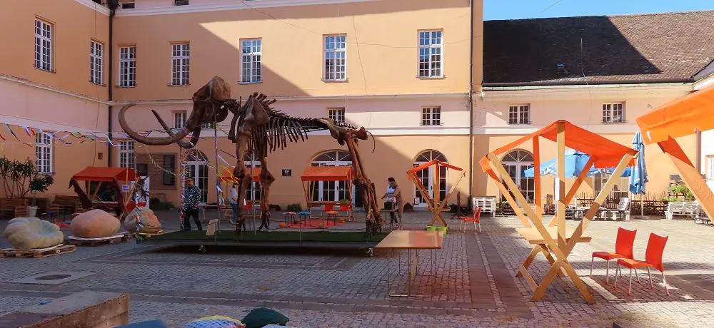 Музеј Војводине на Мамутфесту у Кикинди