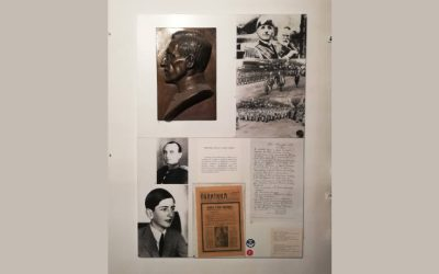 Атентат у Марсеју на сталној поставци Музеја Војводине